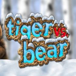 Tiger vs Bear Slot Game Play Online