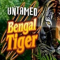 Untamed Bengal Tiger Slot Game Play Online